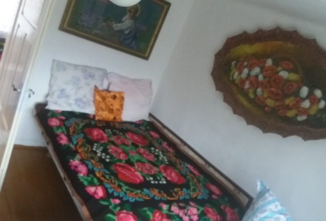 Cazare la HAPPY HOLIDAY AT APUSENI MOUNTAINS,ROMANIA